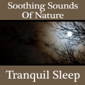 Soothing Sounds of Nature: Tranquil Sleep