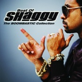 Halo granie The Boombastic Collection Best of Shaggy Shaggy