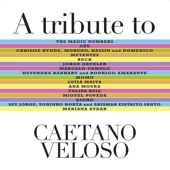 A Tribute to Caetano Veloso