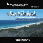 A Day At The Beach - Sounds of Nature (The Australian Ocean)