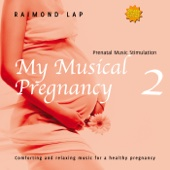 My Musical Pregnancy 2