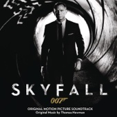 Thomas Newman - Skyfall artwork