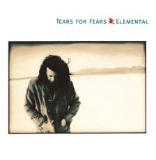 Baixar Break It Down Again - Tears for Fears