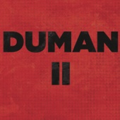 Duman - Duman II artwork