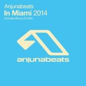 Various Artists - Anjunabeats In Miami 2014 artwork