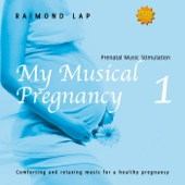 My Musical Pregnancy 1