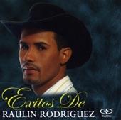 Exitos de Raulin Rodriguez