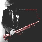 I'm Gonna Love You Just a Little More Baby - Boney James
