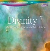 Divinity 7
