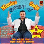 Best of Nicolae Guta