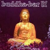 Buddha Bar IX