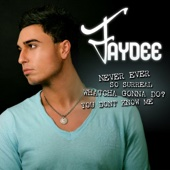 Never Ever - EP - Faydee