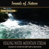 Healing Water: Mountain Stream (Nature Sounds) - Single
