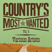 Grand Ole Country Live, Vol. 4