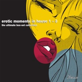 Erotic Moments In House Vol 1-3 (The Ultimate Digital Box Set Collection)