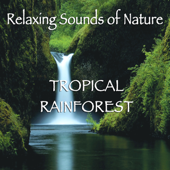 Relaxing Sounds of Nature - Tropical Rainforest