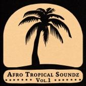 Various Artists - Afro Tropical Soundz, Vol. 1 artwork
