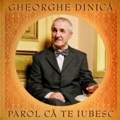 Tii Minte - Gheorghe Dinica