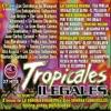 Tropicales Ilegales