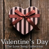 Valentines Day - The Love Song Collection (Instrumental) - Various Artists