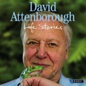 David Attenborough's Life Stories: Faking Fossils (Episode 12, Series 1)