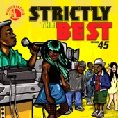 Strictly the Best, Vol. 45