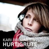 Hurtigrute (