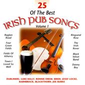25 of the Best Irish Pub Songs - Volume 1