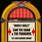 Wooly Bully (Re-Recorded)