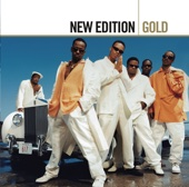 New Edition - Can You Stand the Rain artwork