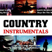 Country Hits Instrumental, Vol.2 (Karaoke Playback)