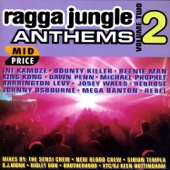 Ragga Jungle Anthems, Vol. Two