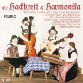 Mit Hackbrett Und Harmonika 2
