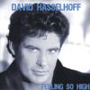 Dance Dance D'Amour - David Hasselhoff
