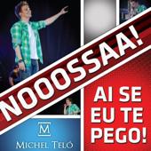 Ai Se Eu Te Pego (Ao Vivo) [Live] - Michel Teló
