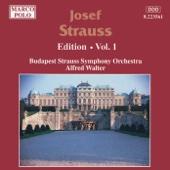 Josef Strauss: Edition, Vol. 1