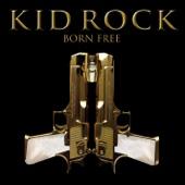 Kid Rock - Born Free Grafik