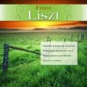 Franz Liszt: Grandes Etudes de Paganini; Hungarian Rhapsody No.2; Piano Sonata in B Minor; Venezia e Napoli