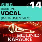 Sing Baritone - Vocal, Vol. 14 (Karaoke Performance Tracks)