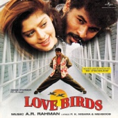 Love Birds (Original Sountrack)