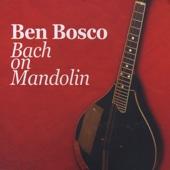 Concerto for Two Violins in D Minor, BWV 1043: I. Vivace