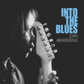 Joan Armatrading - Into the Blues  artwork