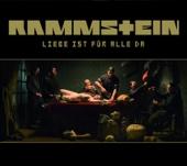 Rammstein - Ich tu dir Weh Grafik