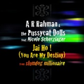 A. R. Rahman & The Pussycat Dolls - Jai Ho! (You Are My Destiny) [feat. Nicole Scherzinger] artwork