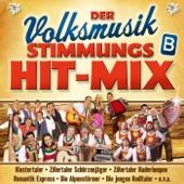 Zillertaler Musikanten-Polka Medley (Folge 1):Nimm dir Zeit für Fröhlichkeit / I komm heut Nacht auf a Bussel zu dir / Wir kommen von den Bergen / Bergvagabunden / Heut will i lustig sein / Ohne Musig geht nix