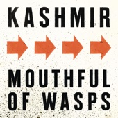 Kashmir - Mouthful of Wasps artwork