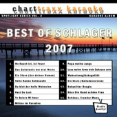 Spotlight Karaoke, Vol. 2: Best of Schlager 2007