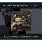 Marvin Gaye - Sexual Healing illustration