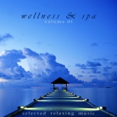 Wellness & Spa, Vol. 01