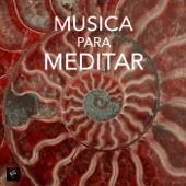 Meditar - Musica de piano